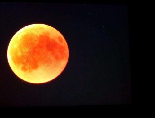27/07/2018: Escursione notturna in Pian Cansiglio al chiar di luna