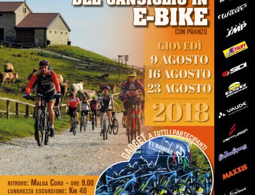 Agosto 2018: Piana del Cansiglio in e-Bike!